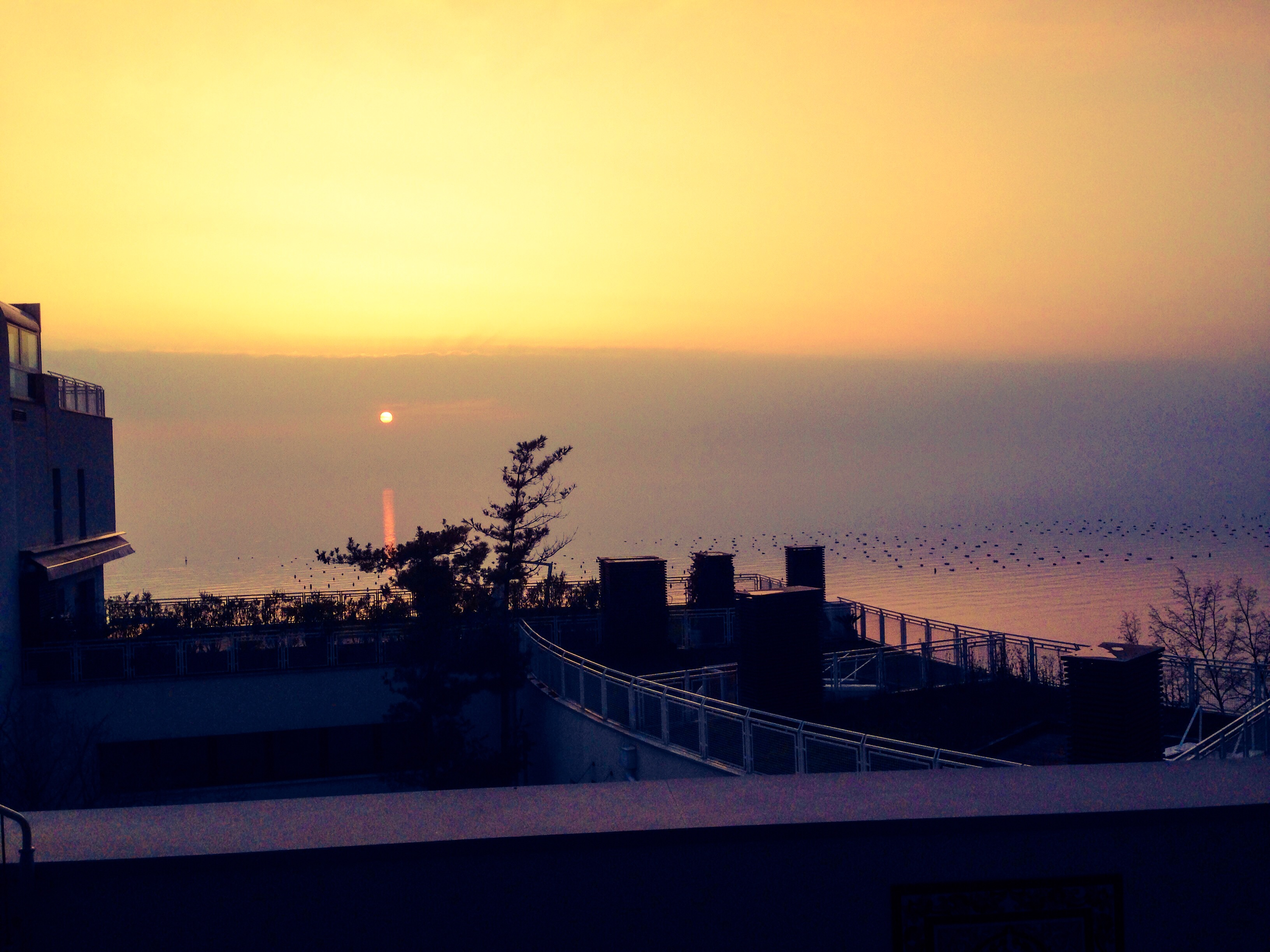 Following yonder star... We were blessed with a hazy sunset on Christmas Day in our apartment near Trieste.